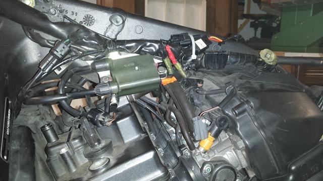 Présentation de la Tondeuse de MrBriko: Hornet 600 2010 20141206_005624